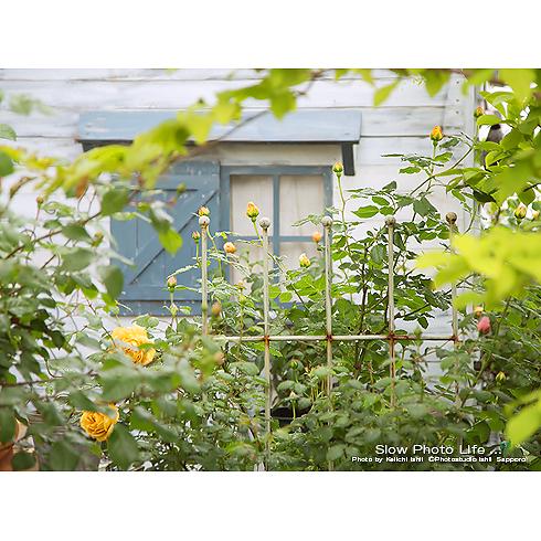 2016のお庭スタジオ