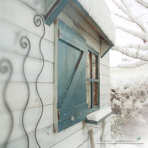 冬のお庭スタジオ