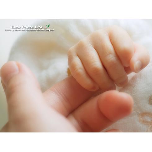きこちゃんの手の写真