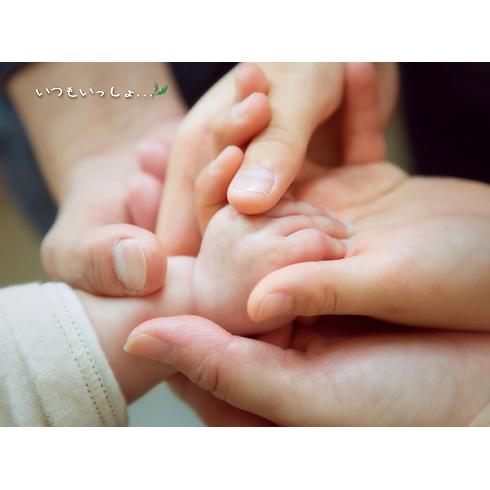ちせちゃん家族の手の写真