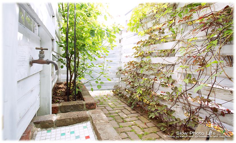 札幌の写真館フォトスタジオ石井のブログ